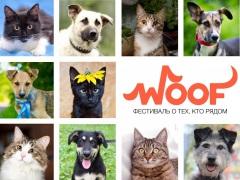 """Выставка собак и кошек - фестиваль """"WOOF"""""""