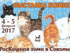 """Международная выставка кошек """"РосКошная зима в Сокольниках"""""""
