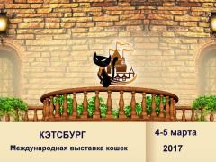 """Международная выставка кошек """"Кэтсбург"""""""