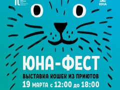 """Муркоша"" зовёт на выставку котиков ""Юнафест""!"