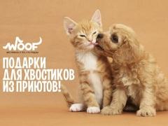 WOOF - фестиваль о животных и для людей