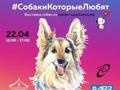 """Выставка """"Собаки, которые любят"""" в парке """"Садовники"""" 22 апреля 2017 года"""