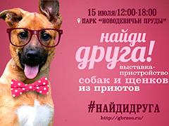 """Выставка-пристройство собак из приютов """"Найди Друга"""" в парке """"Новодевичьи пруды"""""""