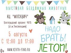 """Выставка бездомных собак и кошек """"Надо Брать! ЛЕТОМ!"""""""