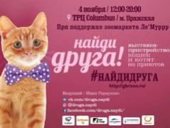 """Выставка кошек из приютов """"Найди Друга!"""""""