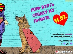 Выставка бездомных животных из приюта Бирюлёво