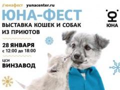 """Выставка-пристройство собак и кошек из приютов на территории ЦСИ """"Винзавод"""""""
