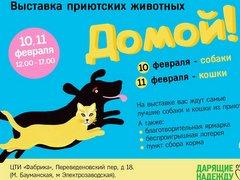 """Выставка- пристройство приютских животных """"Домой!"""""""