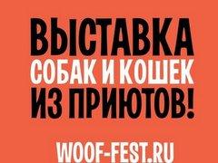 """Фестиваль WOOF """"Делать добро просто"""""""