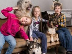 """Выставка собак """"Собаки, которые любят"""""""