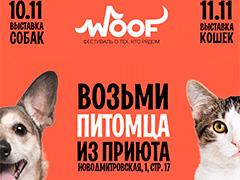 Выставка бездомных животных -фестиваль WOOF