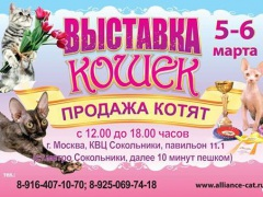 """Выставка кошек """"Весенний Альянс-2016"""" в КВЦ Сокольники"""