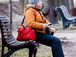 Парки Москвы: тёплые лавочки и костровые зоны