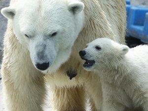 зоопарк Москва